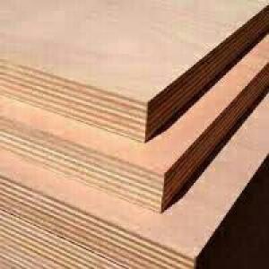 پلی وود/پلای وود/تخته زیر پایی/تخته بنایی/تخته