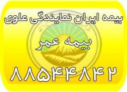 بیمه عمر ایران، بیمه عمر مان (بیمه ایران نمایندگی علوی)