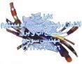 خرید اینترنتی کابل برق 02177327856